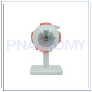 PNT-0661 Elargi modèle vente chaude Human Eye