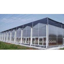 10 años de calidad Resina de policarbonato nuevo material de construcción doble pared de policarbonato hoja de techo para tejados claraboya toldo