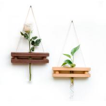 wooden hanging glasses text tube plants shelf pot