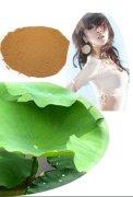 Lotus leaf Extract Nuciferine 2%, Lotus flavones 20.0%