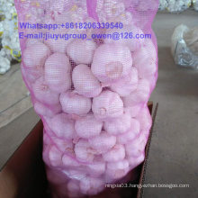 New Crop Raw Normal/Pure White Garlic Edible