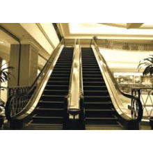 2015 New Product Safe and Low Noise Escalator of Japan Technology (FJ6000-1)