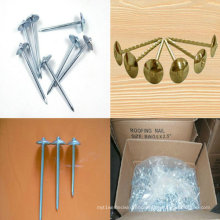 Hardware Nails Hot Galvanized Wire