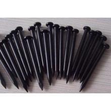 Usine de clous en béton noir de haute qualité - Qualité Holland