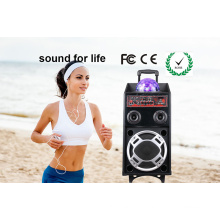 Digital Active Karaoke Speaker with USB/SD/FM