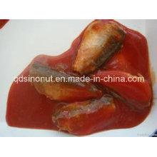 425g Canned Mackerel em molho de tomate (HACCP, ISO, BRC, FDA etc)