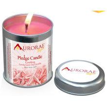 Плоды душистые соевый свечи подарочные в квадратных олова с крышкой