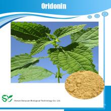High Natural contra el cáncer producto Rabdosia rubescens extracto Oridonin 98%