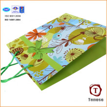 Printed Customized Shopping Gift Hand Paper Bag