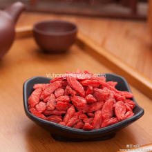 Goji Berry Bush Tốt Berry