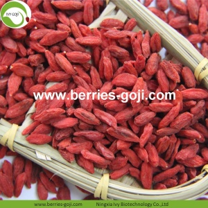 Factory Supply Healthy Natural For Sale Goji