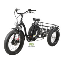 3 Wheels Electric Bikes Brushless Motor Lithium Power Tricycles
