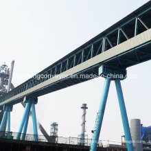 Stainless Steel Truss Structure Rubber Belt Conveyor with Corridor