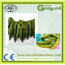 Fruit Vegetable Crisps Frying Equipment