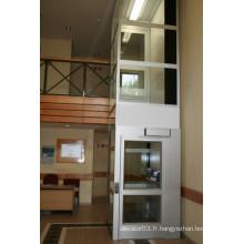 Petite ascenseur pour ascenseur 250kg