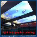 Customized Backlit Poster Graphics for Promotion