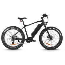 FH500 vollgefedertes E-Bike mit Fettreifen