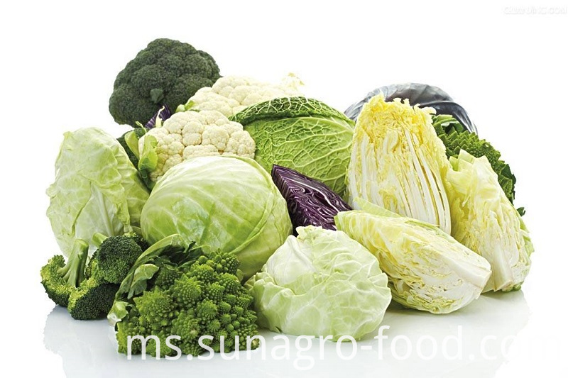 Cabbage Bag Refrigerated Healthy Delicious