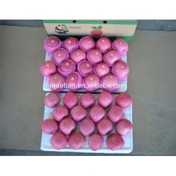 Yantai fruits frais rouge fuji apple meilleur exportateur de prix en Chine