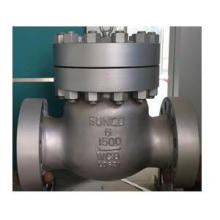 Class 1500 check valve 6 Inch