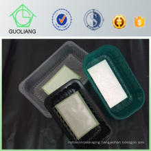 China Manufacturer Supply Biodegradable Frozen Food Packaging Container