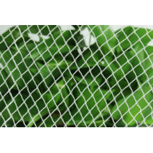 Mono Vineyard Diamond Bird Net