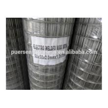 2x2 galvanized welded wire mesh