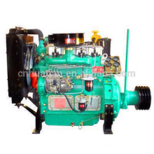 Weifang 495G 495P com PTO Shaft Pully Engine