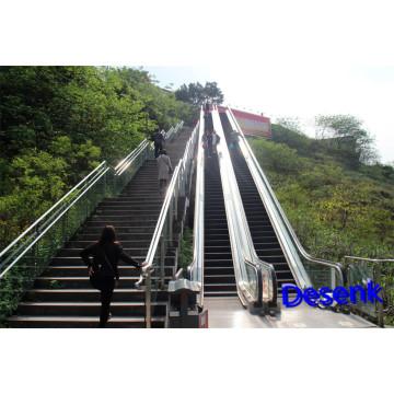 Escalier d'extérieur pour les lieux publics