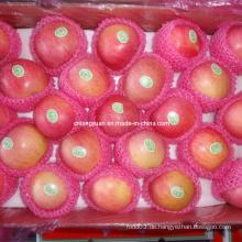 Frische Qinguan Apfel Roter Apfel