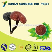 Chinese organic ganoderma spore powder/reishi spore powder/lingzhi extract