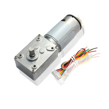 12V DC Micro Gear Motor With Encoder