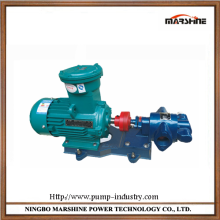 Horizontal electric gear water pump