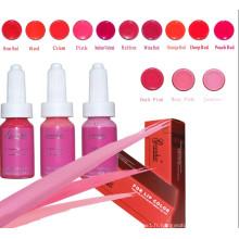 Encre de tatouage colorée professionnelle pour maquillage permanent (ZX-0521)