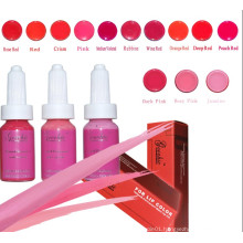 Professional Colorful Tattoo Ink for Permanent Makeup (ZX-0521)