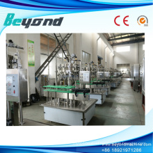Small Capacity Glass Bottle Beer Filling Machine