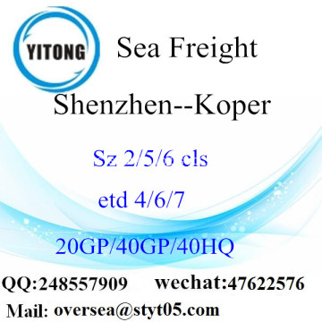 Shenzhen Port Sea Freight Shipping ke Koper