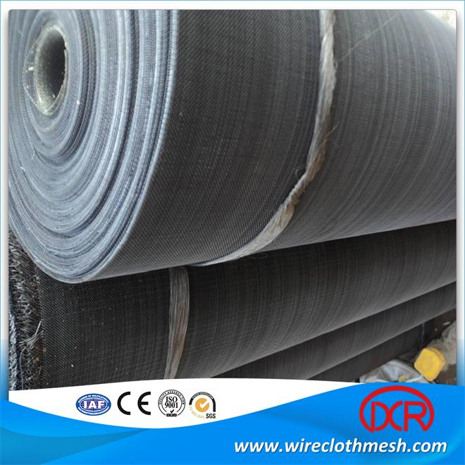 Black Wire Cloth Netting