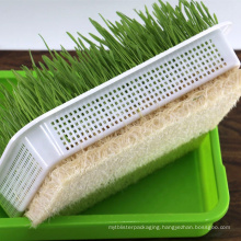 Hydroponic seed tray nutrition nursery tray for plant