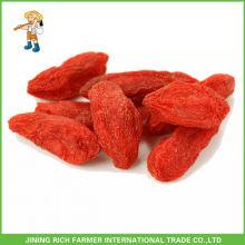 Dried Wolfberry Exportador na China Goji Berry 500g grãos / 50g