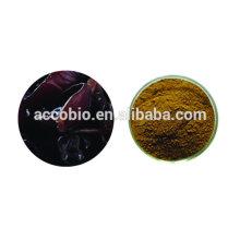 Extrato auricular do Auricularia do extrato da planta do produto comestível