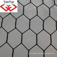 Hot Dipped Galvanized Hexagonal Wire Mesh (TYC-0050)
