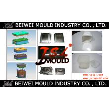 Molde plástico de la caja del helado de la inyección modificada para requisitos particulares