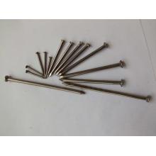 """Fábrica de prego de ferro ungueal comum para construção 1 """"-6"""""""
