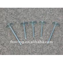 Common iron nails