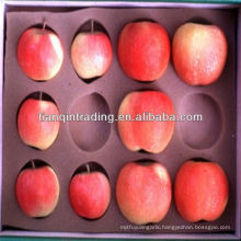 chinese red fuji apple