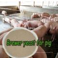 Alibaba Lieferant Brewers getrocknete Hefe für Tierfutter