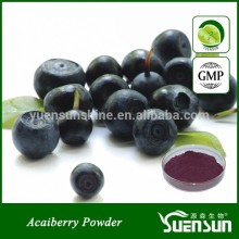 Acai Berry Extract Powder 4:1 in Stock