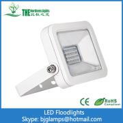 20 Watt Apple LED Floodlights de lampes led les plus vendues