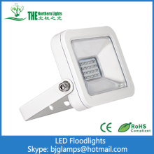 20Watt Apple LED Floodlights of best selling led lights